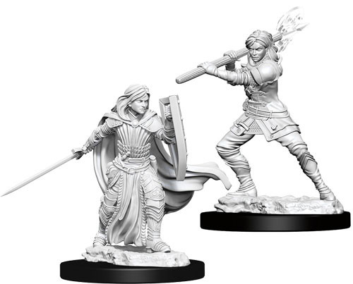 Female Human Paladin - Nolzur's Marvelous Unpainted Miniatures 0