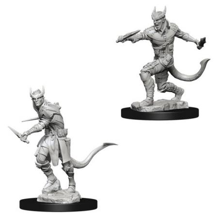 Male Tiefling Rogue - Nolzur's Marvelous Unpainted Miniatures0
