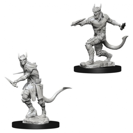 Male Tiefling Rogue - Nolzur's Marvelous Unpainted Miniatures1