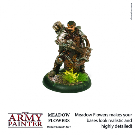 Meadow Flowers - The Army Painter4