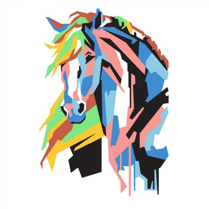 Pictura cu nisip colorat Calul Cubic 2