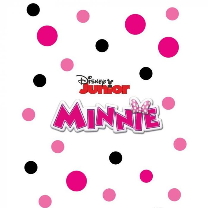 Pictura cu nisip colorat Minnie Mouse & Figaro 2