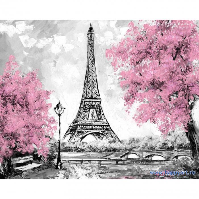 Set Goblen cu diamante, cu sasiu, Turnul Eiffel Inflorit, 40x50 cm, 15 culori [0]