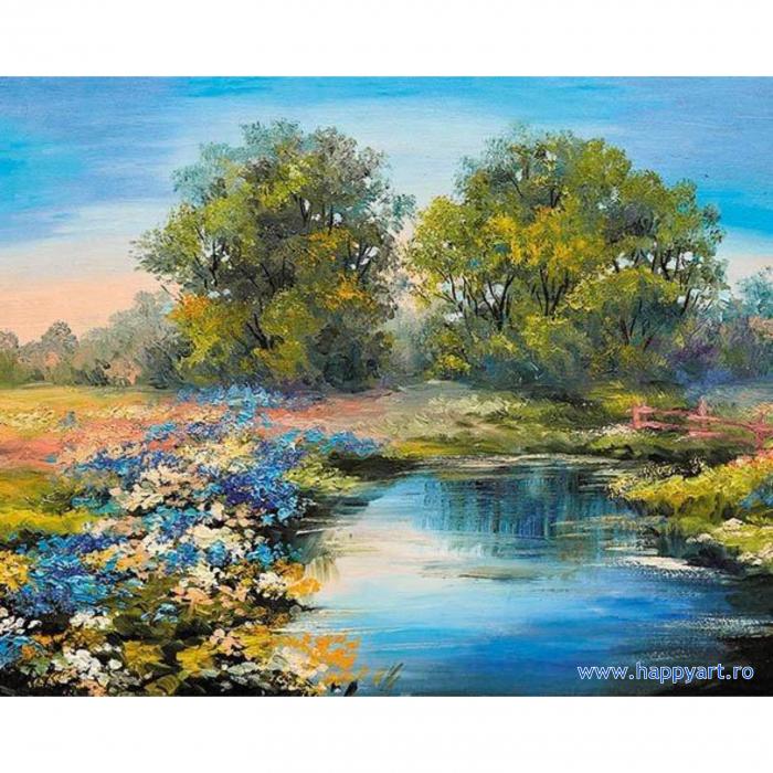 Set pictura pe numere, cu sasiu, Raul Vara, 40x50 cm, 30 culori [0]