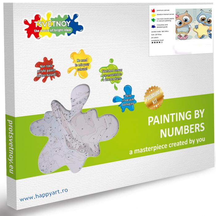 Set pictura pe numere, cu sasiu, Steluta in Dar, 20x30 cm, 24 culori [3]