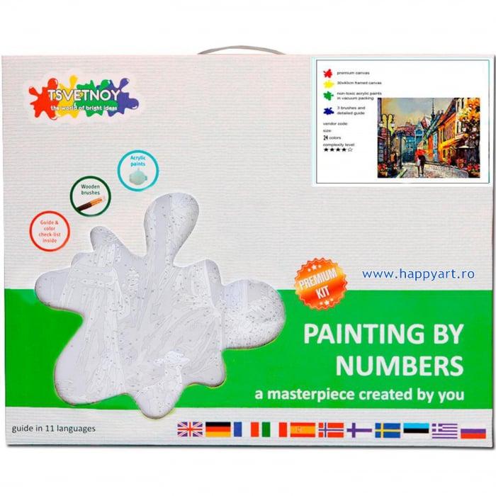 Set pictura pe numere, cu sasiu, Oras European, 40x50 cm, 24 culori [5]
