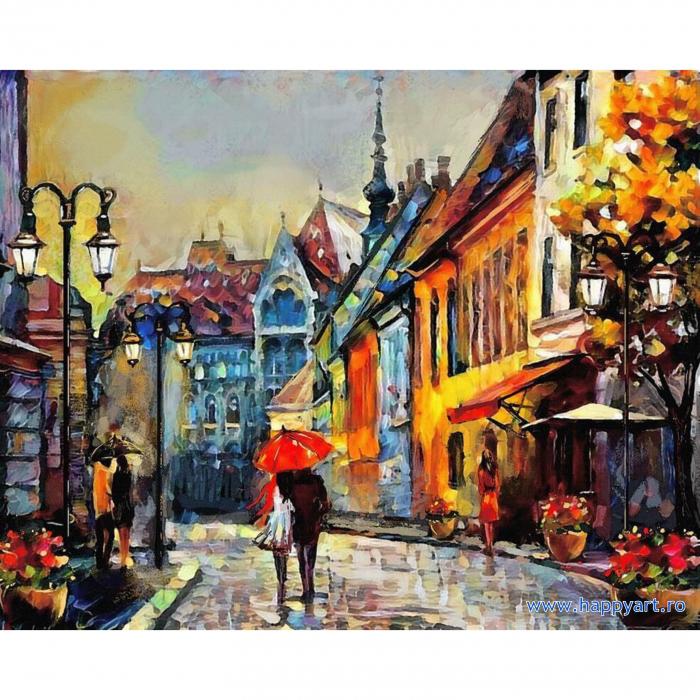 Set pictura pe numere, cu sasiu, Oras European, 40x50 cm, 24 culori [0]
