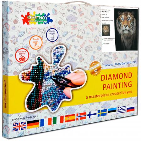 Set Goblen cu diamante, cu sasiu, REGE, 40x50 cm, 16 culori [2]