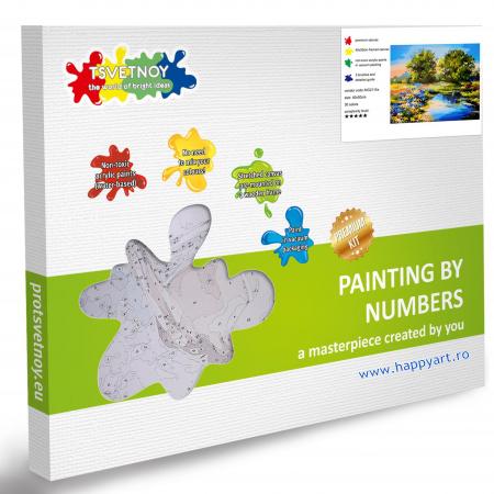 Set pictura pe numere, cu sasiu, Raul Vara, 40x50 cm, 30 culori [4]