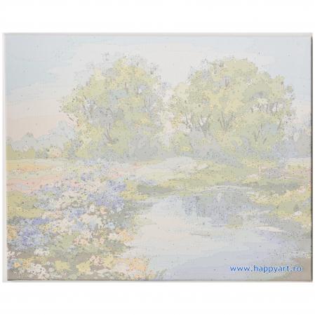 Set pictura pe numere, cu sasiu, Raul Vara, 40x50 cm, 30 culori [6]