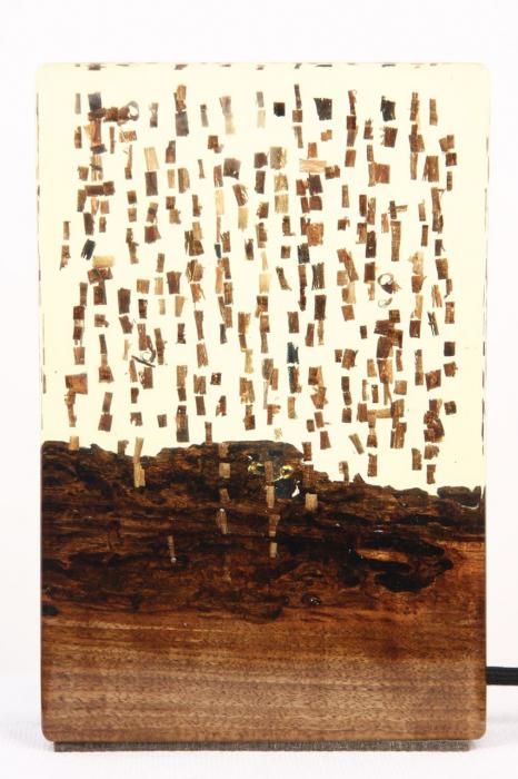 Lampa din rasina epoxidica cu lemn de maslin [7]