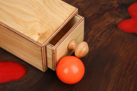 Cutia permanentei cu sertar din placaj (+ 8 luni)1