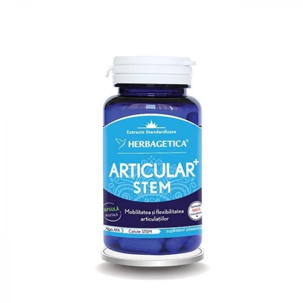 Articular + stem, 30 capsule, Herbagetica 0
