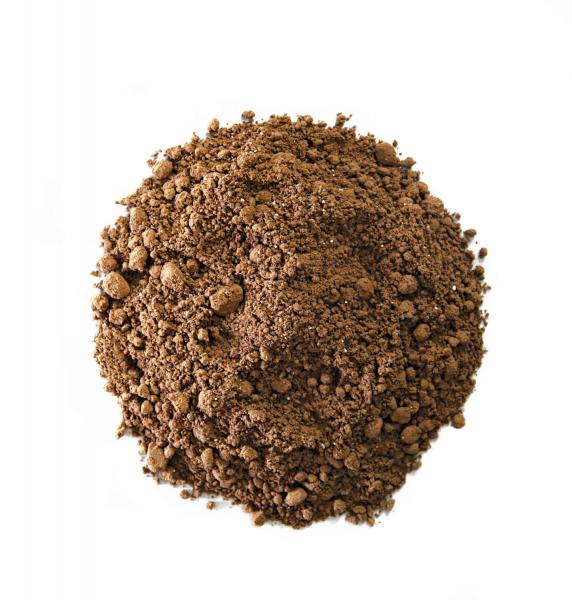 Cacao BIO - Chili Cat 1
