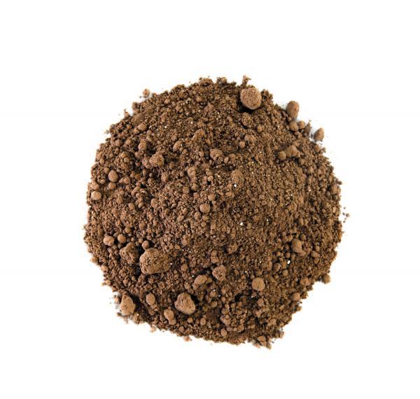 Cacao BIO - Choc Dog 1
