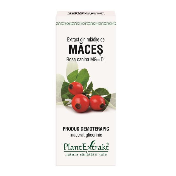 Extract din mlădite de Maceș, 50 ml, Plant Extract [0]