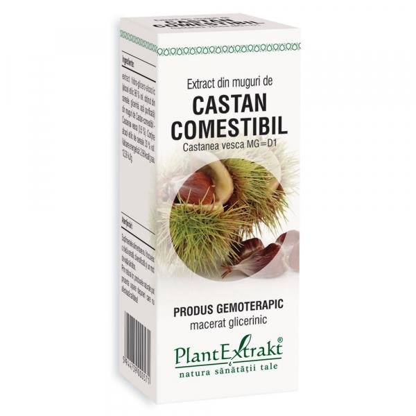 Extract din muguri de Castan comestibil, 50 ml, Plant Extrakt [0]