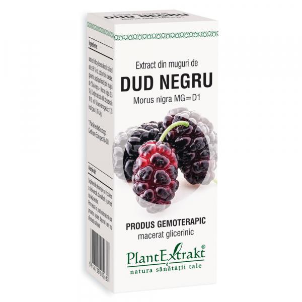 Extract din muguri de Dud Negru, 50 ml, Plant Extrakt [0]