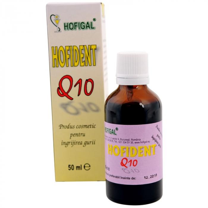Hofident Q10, 50 ml, Hofigal [0]