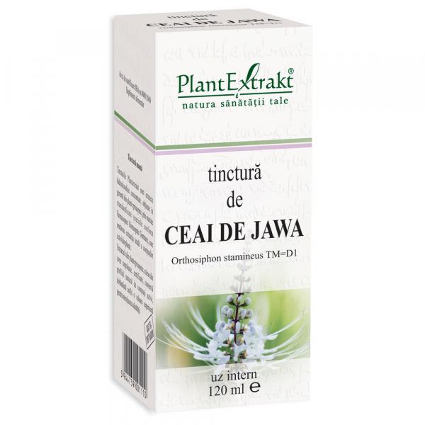 Tinctură de Ceai de Jawa, 120 ml, Plant Extrakt [0]