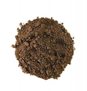 Cacao BIO - Piña Pig1