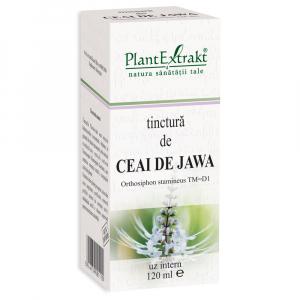 Tinctură de Ceai de Jawa, 120 ml, Plant Extrakt [1]