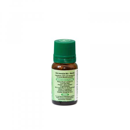 Ulei esential de menta de camp Bio, 10 ml [3]