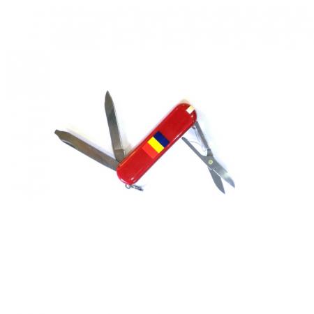 BRICEAG CLASSIC SD LOGO ROMANIA 100 0.6223.R2 [1]