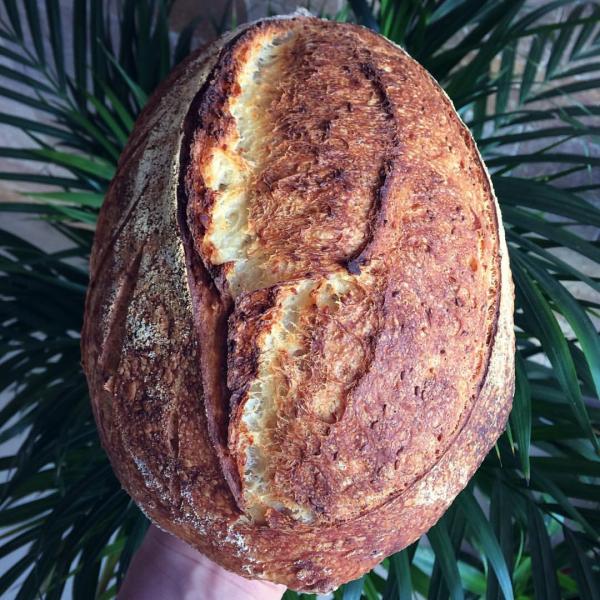 Pâine cu grâu dur cu maia [0]