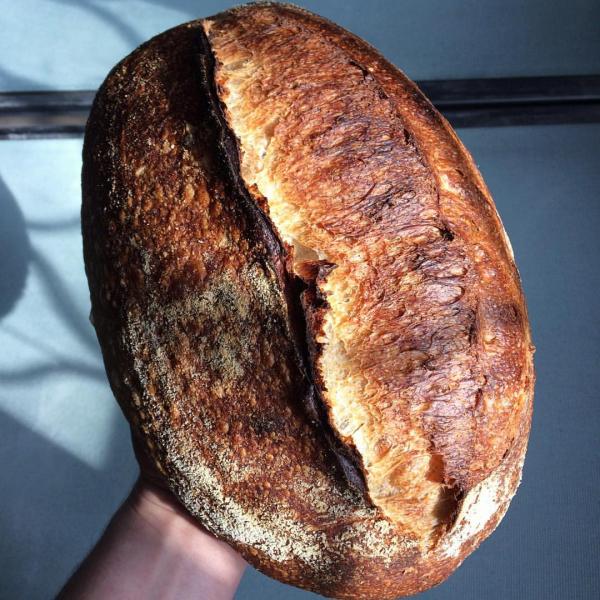 Pâine țărănească cu maia [0]