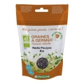 Ridiche purpurie pt germinat eco 100g [0]