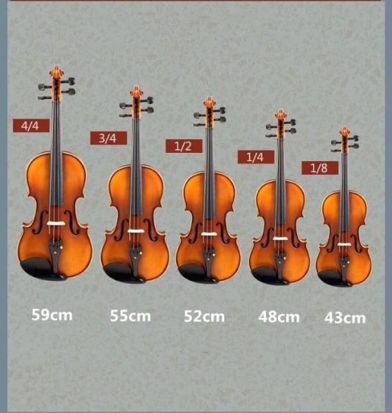 Vioara clasica din lemn 3/4 toc inclus + set corzi cadou 7