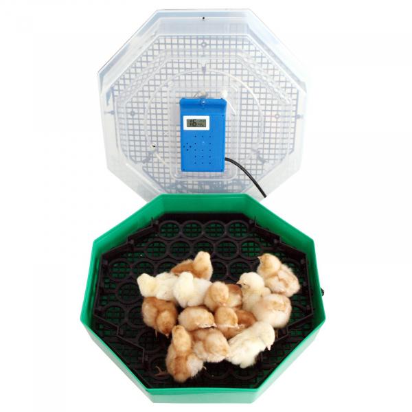 Incubator electric pentru oua cu dispozitiv de intoarcere, termometru si termohigrometru, Cleo, model 5DTH [1]