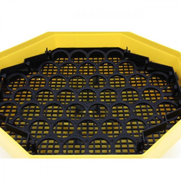 Incubator electric pentru oua cu dispozitiv intoarcere, Cleo, model 5D 3