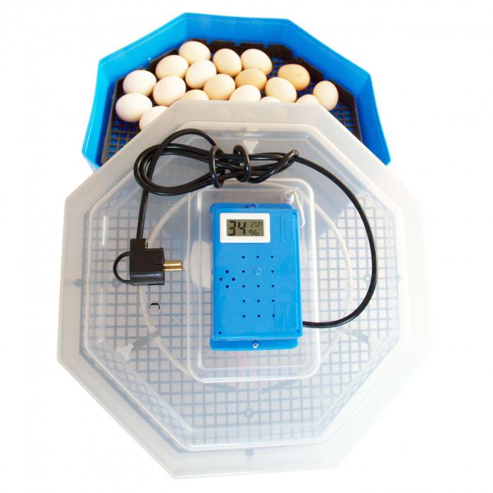 Incubator electric pentru oua, Cleo 5TH, termometru si termohigrometru, galben [3]