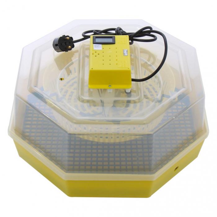 Incubator electric pentru oua, Cleo 5TH, termometru si termohigrometru, galben [0]