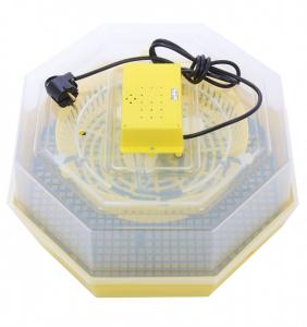 Incubator electric pentru oua, Cleo, model 51