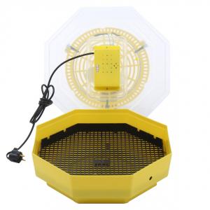 Incubator electric pentru oua, Cleo, model 53