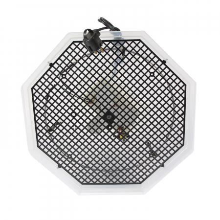 Incubator electric pentru oua cu dispozitiv dublu de intoarcere automat, termometru si hidrociclometru, Cleo, model 5X2-DTH [2]