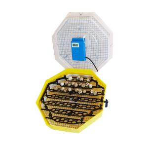Incubator electric pentru oua cu dispozitiv de intoarcere, termometru si termohigrometru, Cleo, model 5DTH [0]