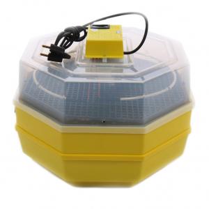 Incubator electric pentru oua cu dispozitiv dublu de intoarceresi termometru, Cleo, model 5X2-DT1