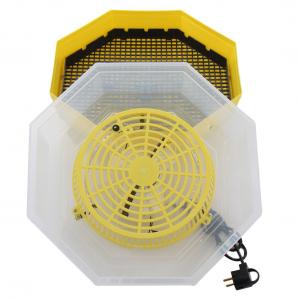 Incubator electric pentru oua cu termometru, Cleo, model 5T3