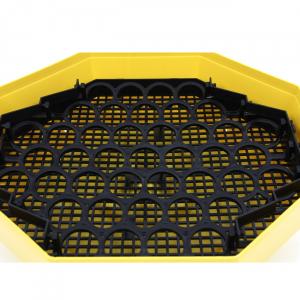 Incubator electric pentru oua cu dispozitiv intoarcere, Cleo, model 5D3