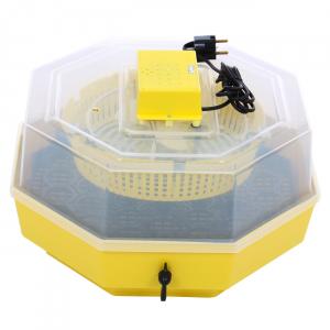 Incubator electric pentru oua cu dispozitiv intoarcere, Cleo, model 5D0