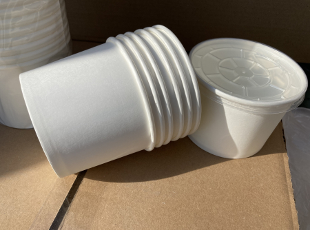 Boluri carton alb [1]