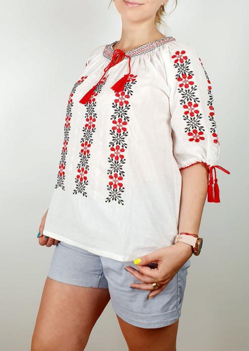 Ie Traditionala Livia [2]