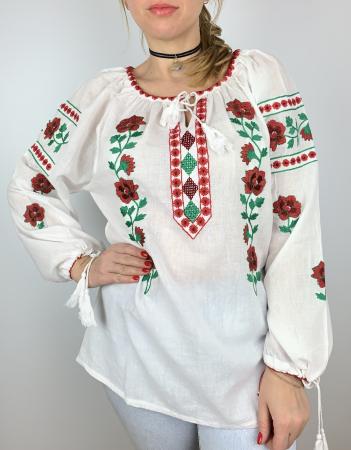 Ie Traditionala Ignasia [3]