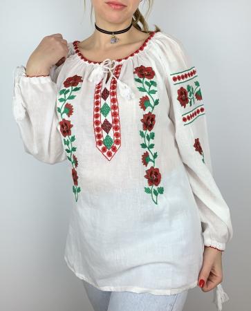 Ie Traditionala Ignasia [0]