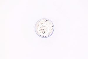 Microbrush-uri Lash B6