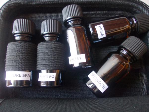 Geanta pentru uleiuri esentiale 4